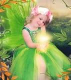 Shropshire's Fairy Princess & Her Prince
